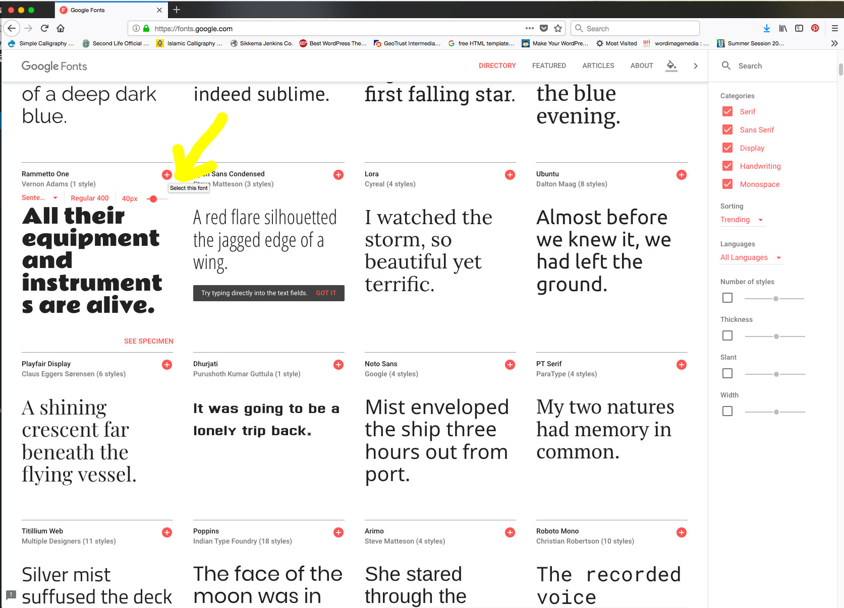 teaching website design � class blog for suny ulster web